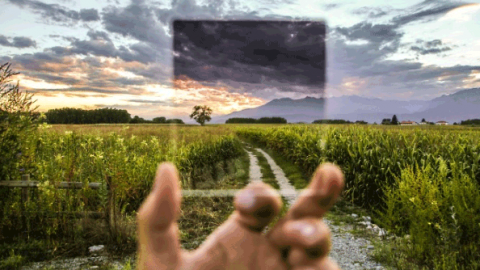Два типа мышления,  которые могут вести вас к успеху или поражению